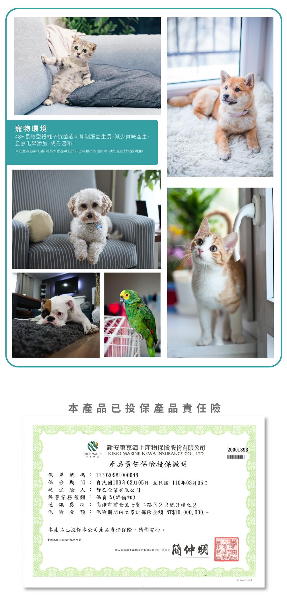 銀離子抗菌液可應用寵物環境用以除臭,貓在窗邊,貓在沙發上,狗在地毯上,鳥在鳥籠上,已投保產品責任險字號